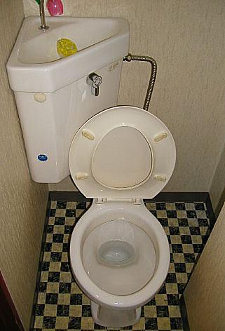 toile4.jpg