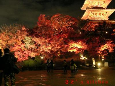 清水寺ライトアップ5