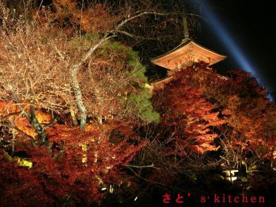 清水寺ライトアップ4