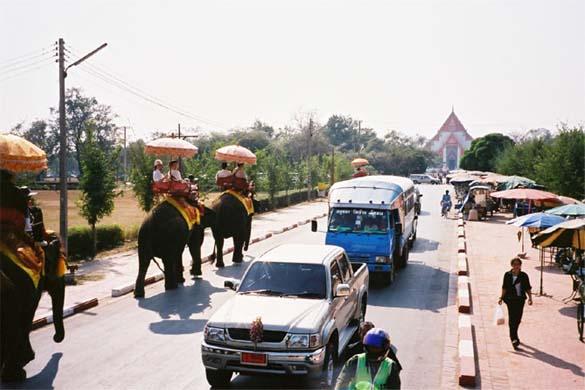 ゾウの上2