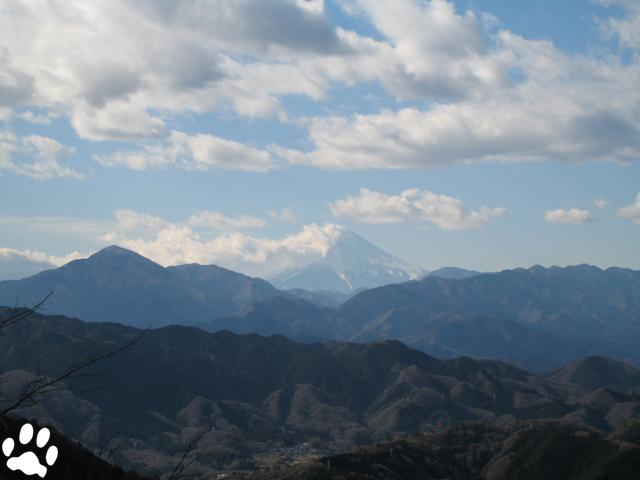 Mt-takao_1_6.jpg