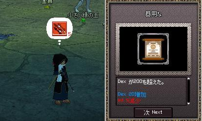 mabinogi_2006_08_25_003.jpg