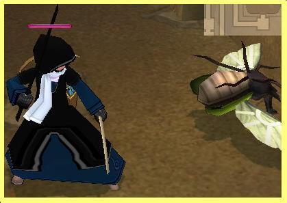 mabinogi_2007_07_22_028.jpg