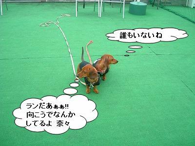 19.11.9遊び1 (1)