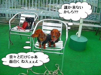 19.11.9遊び1 (3)