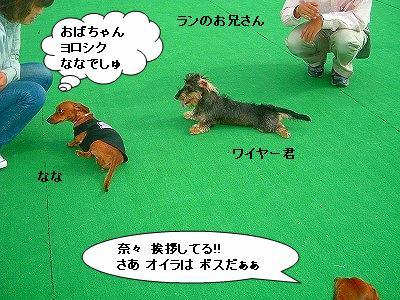19.11.9遊び1 (7)