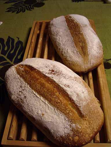 ぞうりパン