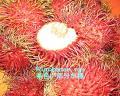 ランブータン(ンゴ)種