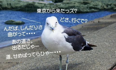 ブログ用画像