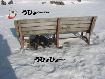 1月4日うひょる岩&乙女