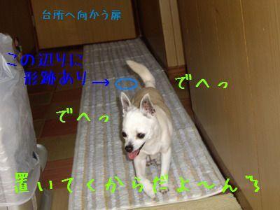 20070521222644.jpg