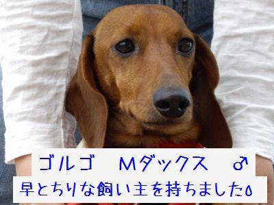 20070525140420.jpg