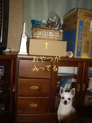 20070814192709.jpg