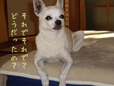 20071031025941.jpg