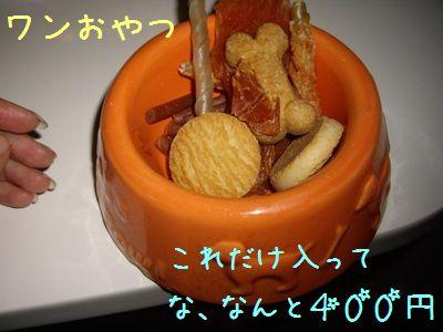 20071104202049.jpg