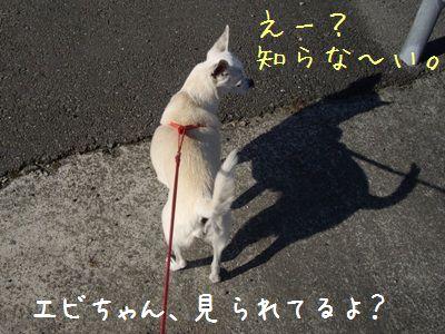 20071105205950.jpg