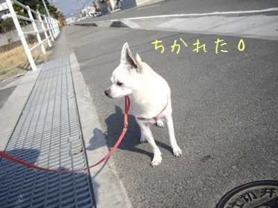 入り江10