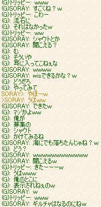 TOEO101.jpg