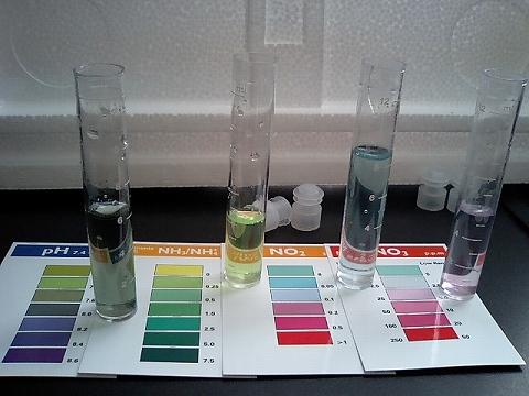 水質検査071222