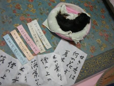 2007_1127kikiburogu0042.jpg