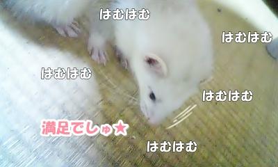 はるの反応☆
