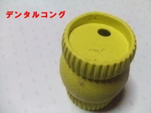 2007 12.30 実家 トト&