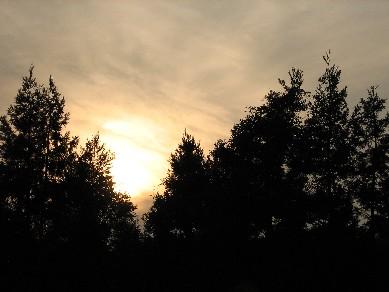 夕陽1005