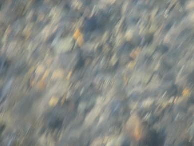 奥入瀬川水面