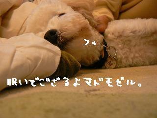 眠いセバスチャン1210