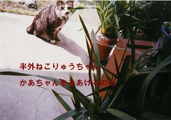 りゅう9_0006文字