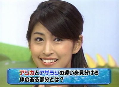 hitomi_20071118_002.jpg