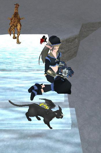 ゴク姉と魔猫