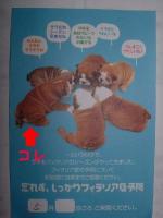20070512212611.jpg