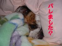 08日 術後 (1)