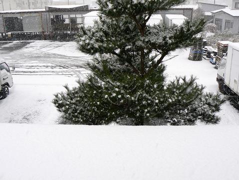 071119 雪景色 西側