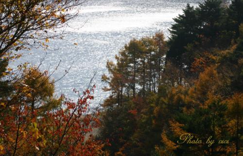 本栖湖と紅葉