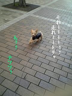 071123_145009.jpg