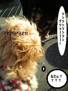 071124_143507.jpg