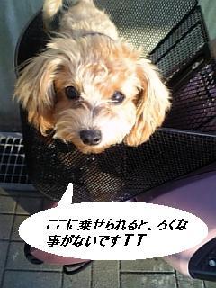 071210_151215.jpg