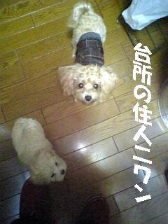 071219_162911.jpg