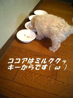071224_160815.jpg