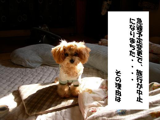 UNI_0002.jpg