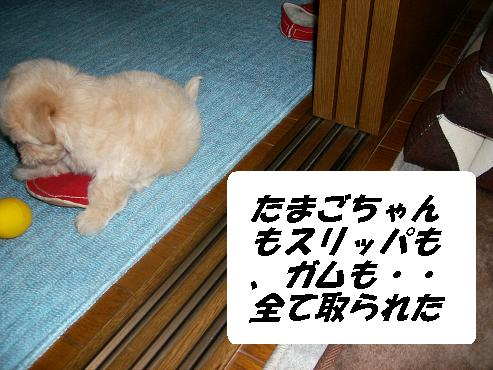 UNI_0031.jpg