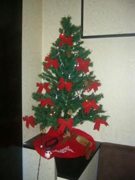 聖子ちゃんCD クリスマス飾り 003