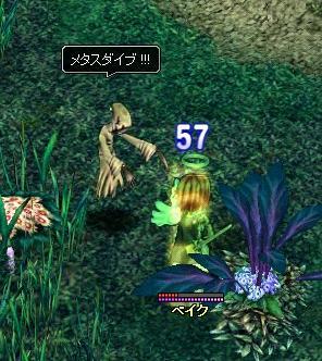 2007.2.26.3.jpg