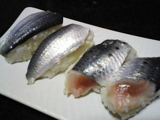 真イワシ寿司