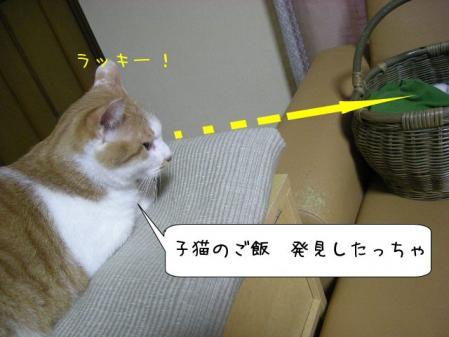 200711142.jpg