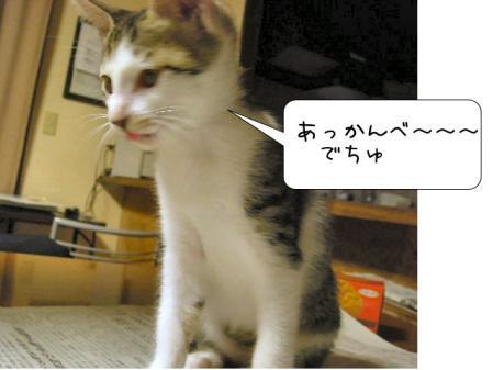 200711203.jpg
