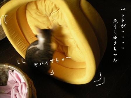 200712711.jpg