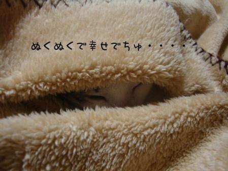 20071281.jpg